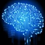Connexions du cerveau
